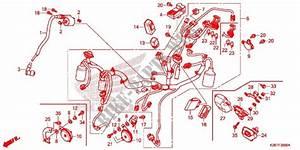 Wire Harness  Battery For Honda Msx 125 Sf 2017   Honda