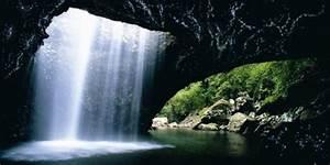 Glow Worm Caves