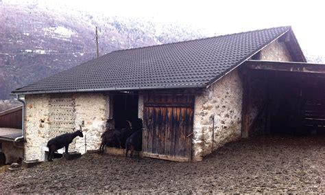 Stall Umbauen Wohnhaus by Pl 17 Planung Stall Zu Wohnhaus In Malvaglia Holzbau