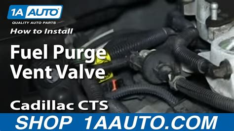 How Install Replace Fuel Purge Vent Valve