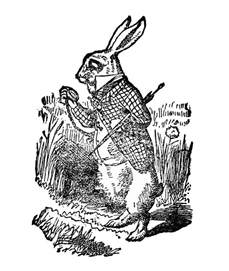 free vintage clip white rabbit in the graphics