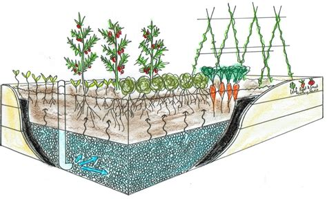 how to make a water bed self watering wicking beds leaf root fruit gardening