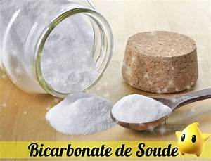 Bicarbonate De Soude Désherbant Dosage : les 100 astuces du bicarbonate de soude cosm tiques recette pour la maison baking soda ~ Melissatoandfro.com Idées de Décoration