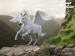 Realistic White Pegasus | www.pixshark.com - Images ...
