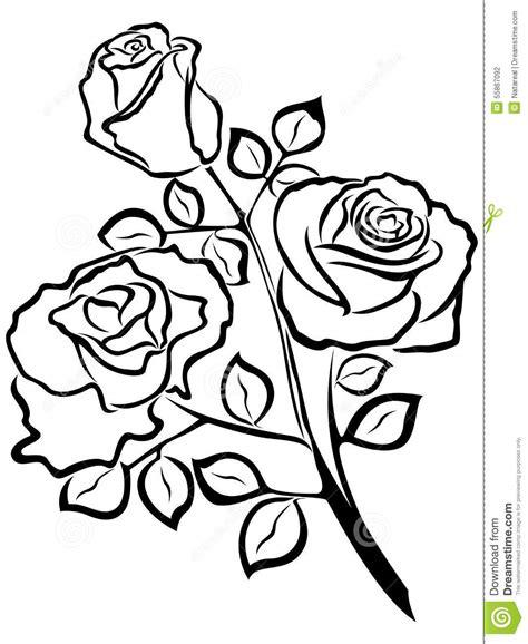 black outline  rose flowers stock vector image