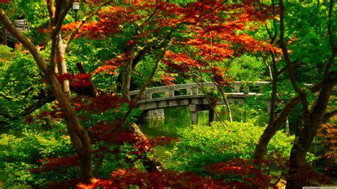 Japanischer Garten Bilder by Lush Greenery Pictures Beautiful Gardens Wonderwordz