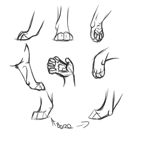 Big Cats Paw Tutorial By Afrozenheart On Deviantart