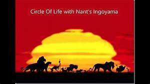 Circle Of Life With Nant U0026 39 S Ingoyama Rehearsal Music
