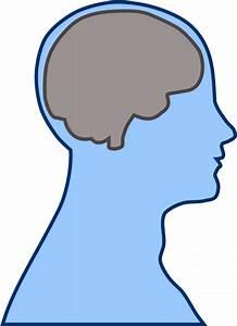 Brain Clipart - Clipart Bay