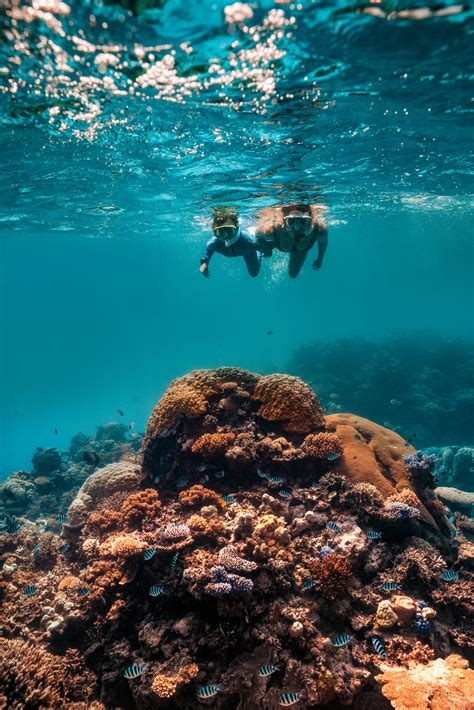 New for Cairns & Great Barrier Reef | Business Events Cairns