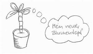 Palme Umtopfen Wurzeln Abschneiden : drachenbaum vermehren ~ Frokenaadalensverden.com Haus und Dekorationen