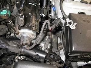Volkswagen Diesel Fuel Filter Location