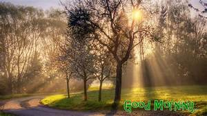 Good Morning Wallpapers Free Download