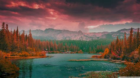 aesthetic beautiful nature wallpaper 2560x1440 56410