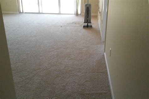 clearwater flooring anhyzer carpet carpet and tile services for ta bay and clearwater