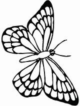 Butterfly Coloring Monarch Pages Butterflies Outline Sheets Printable Colouring Flower Template Adult Templates Kelebek Summer Books Stencils Google Silhouette Source sketch template
