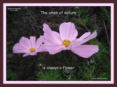The Amen Of Nature Is Always A Flower. Positive Uplifting Quotes Pinterest. Kindness Humor Quotes. Work Learning Quotes. Humor Quotes Weheartit. Christmas Quotes Unknown Author. Dr Seuss Quotes Remember Me And Smile. Mom Quotes Missing. Winnie The Pooh Quotes Friendship