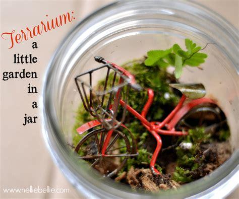 how yo make a terrarium terrarium diy how to make a terrarium in a jar instructions