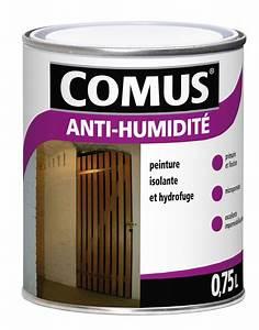 Peinture Pour Mur Humide : peinture pour mur humide ~ Dailycaller-alerts.com Idées de Décoration