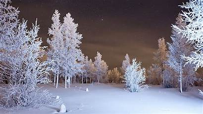 Snow Winter Wallpapers 4k Forest Ultra Snowy
