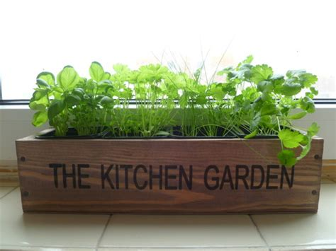 herb kitchen garden kit indoor windowsill balcony box
