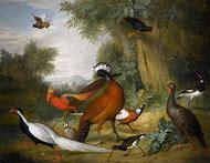 Tobias Stranover Oil Paintings