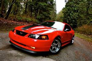 21 best ideas about SHAKIN---'03 & '04 Mach 1's on Pinterest | Wheels, 2004 ford mustang and ...