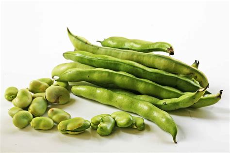 what are fava beans fava bean dip with goat cheese and garlic recipe simplyrecipes com