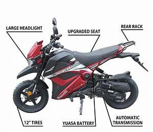 Chinese Pocket Bike Engine Diagram  U2022 Downloaddescargar Com
