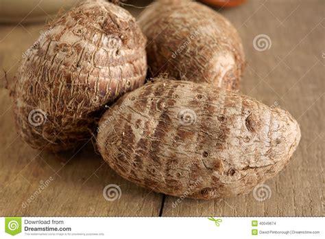 Eddoe A Tropical Root Vegetable Stock Photo  Image 40049674