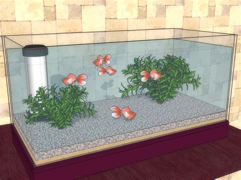 clean  goldfish tank  steps  pictures
