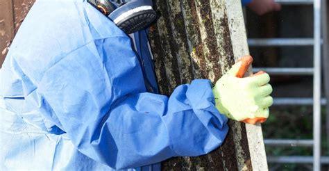 asbestos abatement contractors