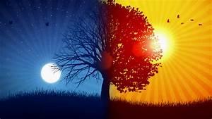 Seeing The Sun In The Night