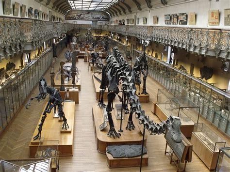 Muséum National D'histoire Naturelle  A La Une, Musées