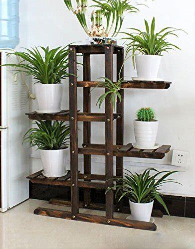Pflanzen Von Zengaihuajia Und Andere Gartenausstattung Für
