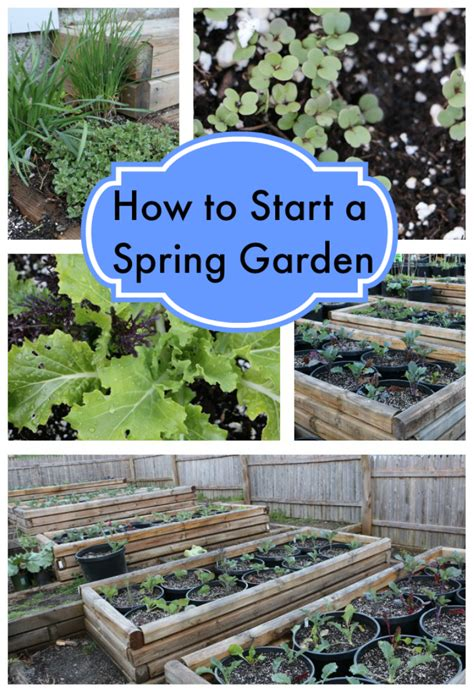 how to start a garden how to start a garden stylish for
