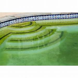 Nettoyer Piscine Verte : piscine enterr e eau verte ~ Zukunftsfamilie.com Idées de Décoration