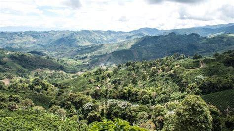 รูปภาพฟรี: ท้องฟ้า ต้นไม้ เมฆ ป่า สีเขียว ภูเขา