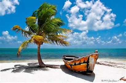 Florida Beach Keys Scene Palm Boat Tree