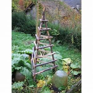 Support Plantes Grimpantes : support plante grimpante ~ Dode.kayakingforconservation.com Idées de Décoration