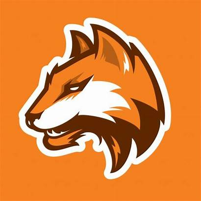 Fox Head Mascot Logotype Logotipo Mascotte Sportivo