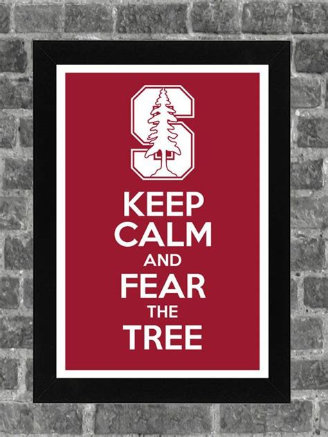 stanford school colors 17 best ideas about stanford on