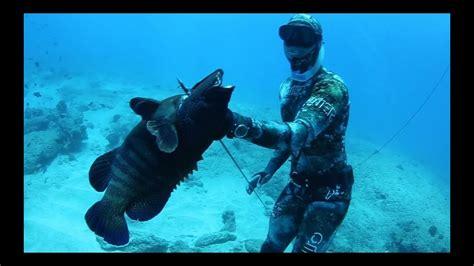 hawaii spearfishing  man  sea youtube