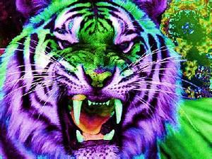 trippy tiger