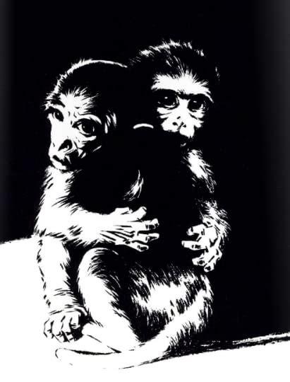 animal liberation  graphic guide  lori gruen