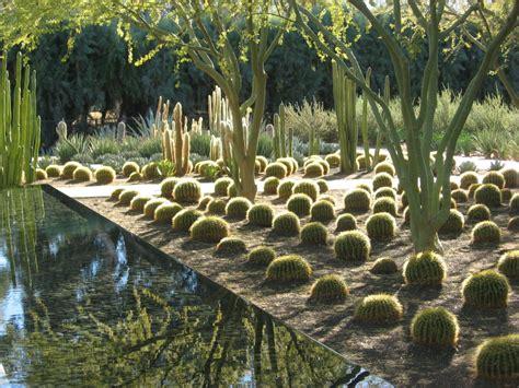 wondrous nature by susan carr