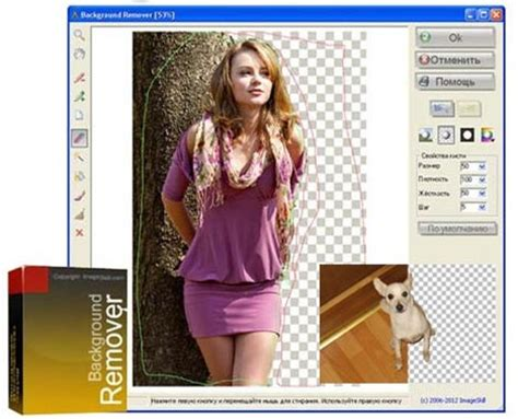 photo background remover full  full program indir