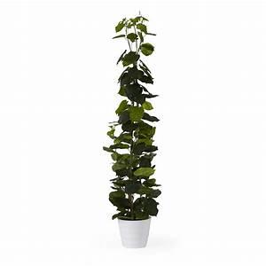 Plante Artificielle Alinea : plante artificielle en pot h180cm vert diffen les plantes artificielles et d co les cache ~ Teatrodelosmanantiales.com Idées de Décoration