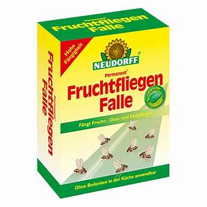 Fruchtfliegen Im Bad : neudorff permanent fruchtfliegen falle 1 stk bauhaus ~ Lizthompson.info Haus und Dekorationen