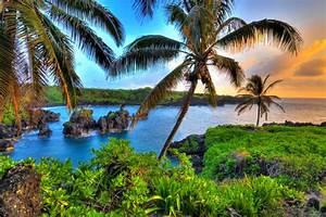 hawaiian landscapes honeymoons by weddingwire travel With maui or honolulu for honeymoon